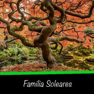familia-soleares