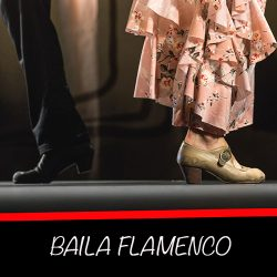 Tutoriales de flamenco